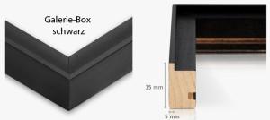 Galerie-Box schwarz